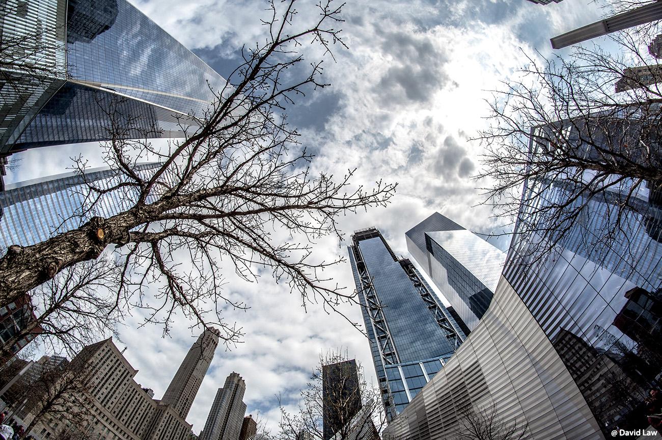 New York 36 1