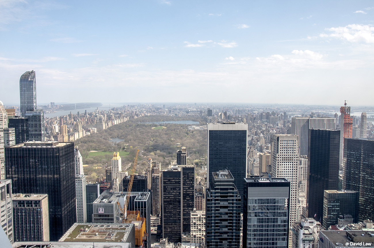 New York 40 1