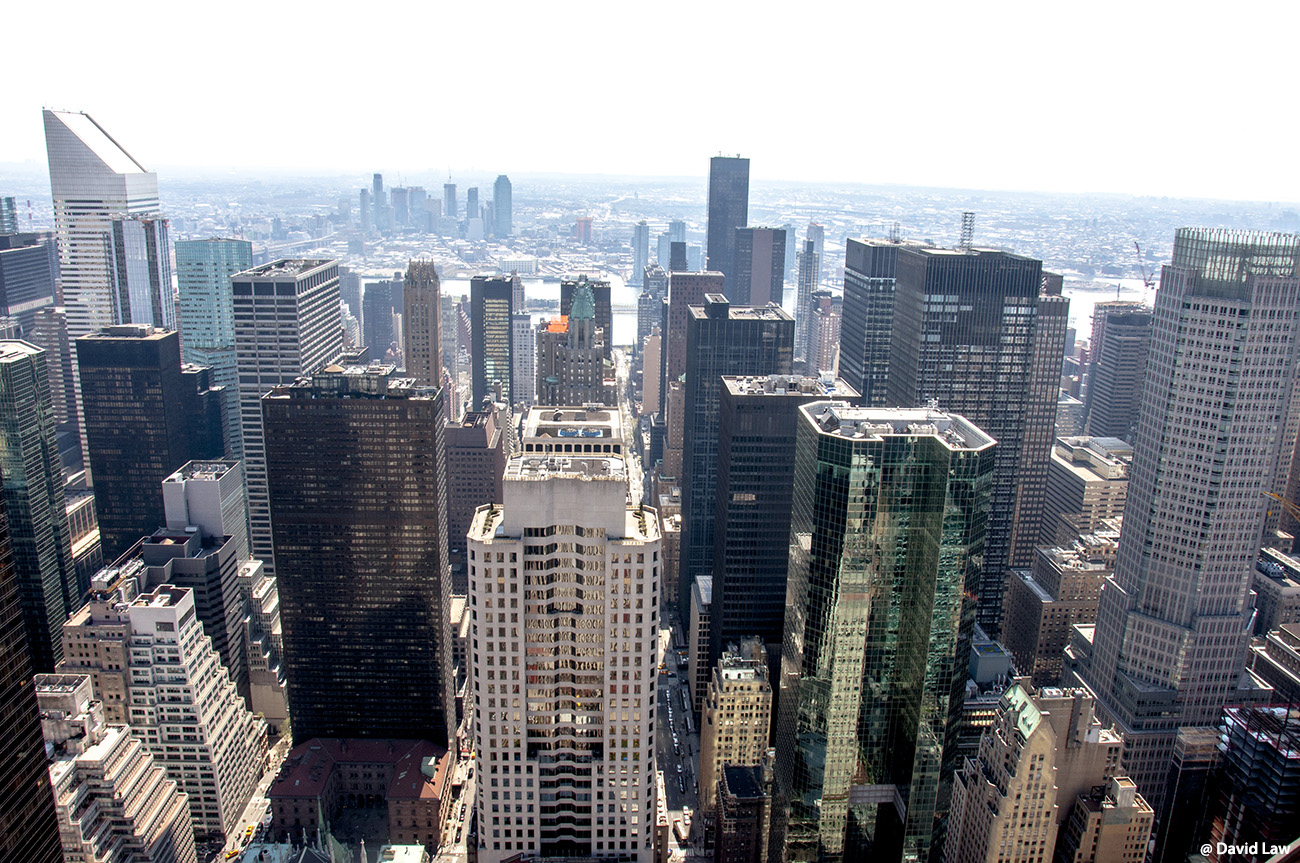 New York 41 1