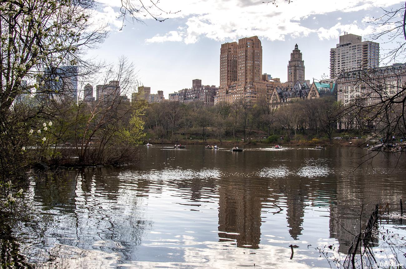 New York 42 1