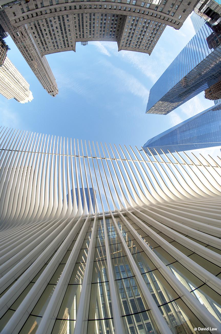 New York 74 1