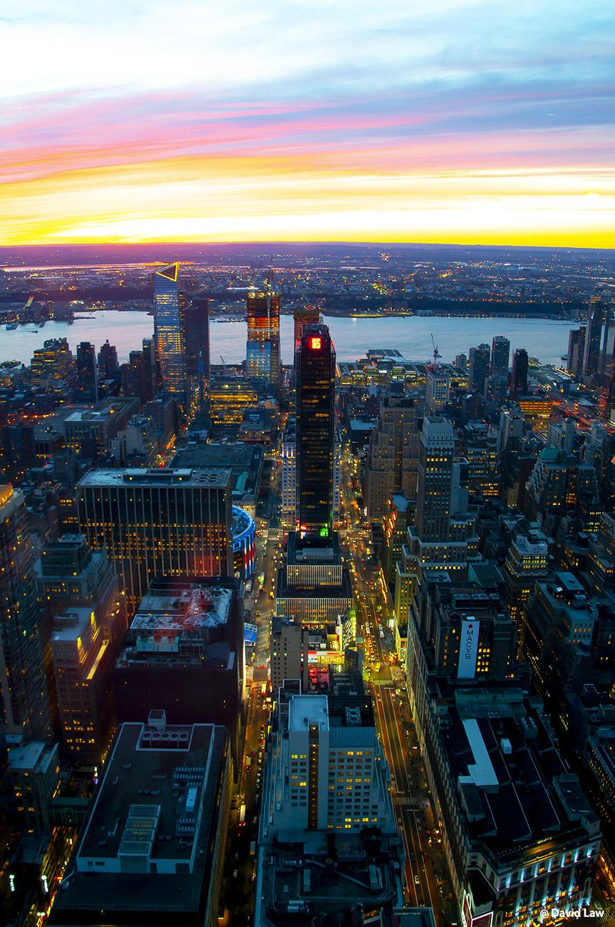 New York 81 1