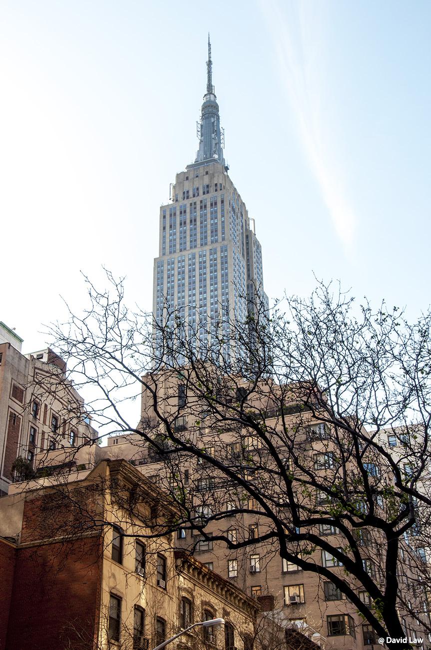 New York 86 1