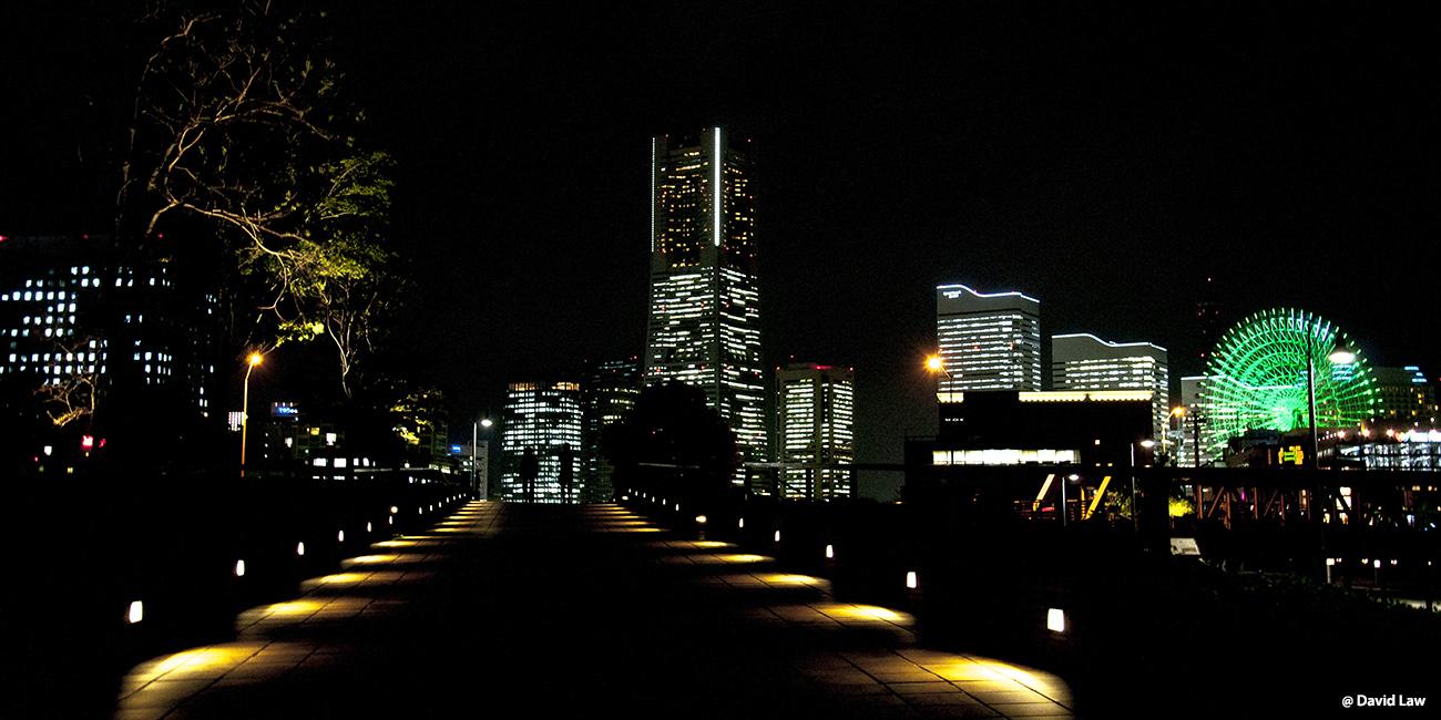 Tokyo 110 40X80