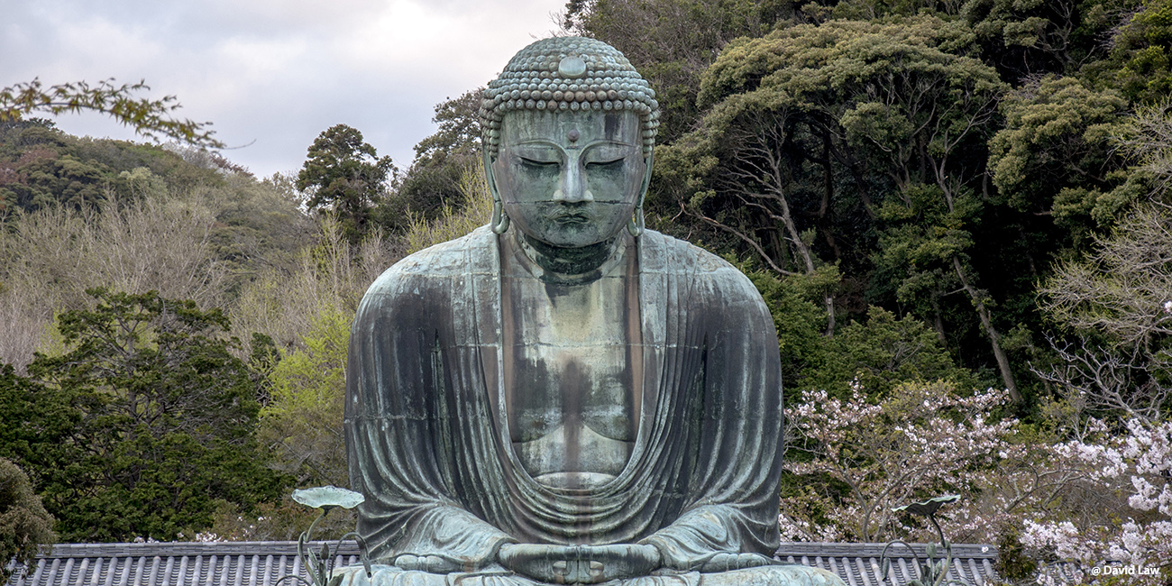 Tokyo 126 40X80