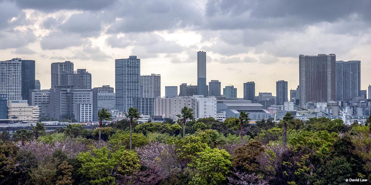 Tokyo 140 40X80