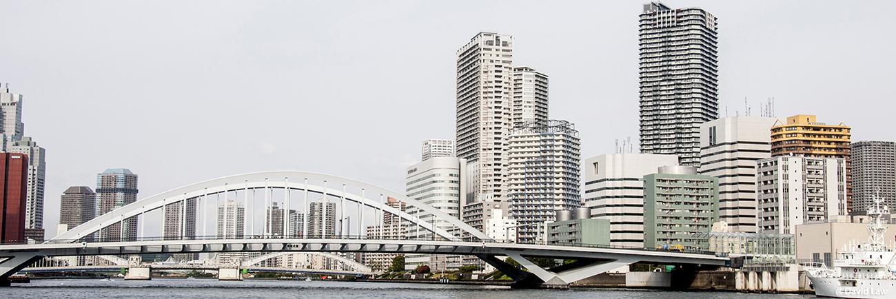 Tokyo 147 30X90