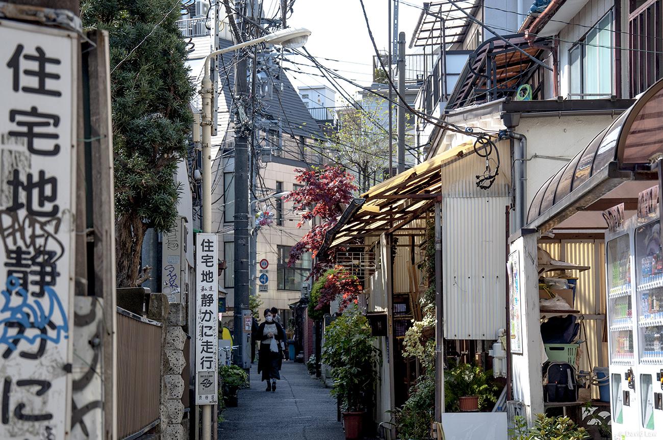 Tokyo 53