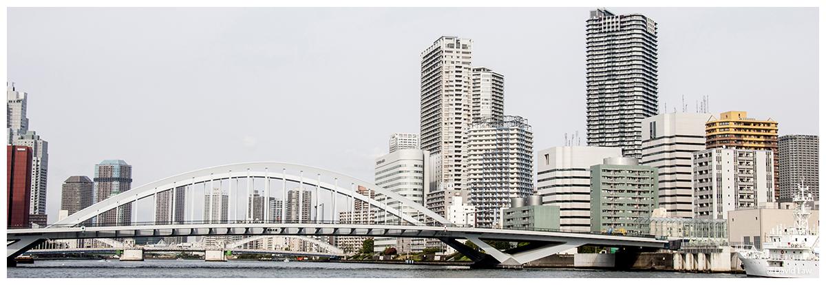Tokyo Pano 1