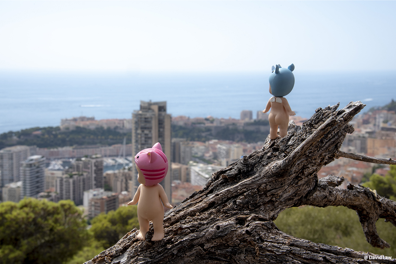 Monacos Bay Angels