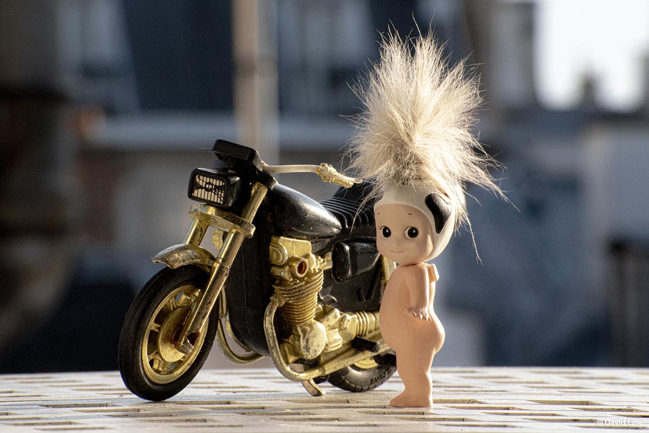 The Biker 1