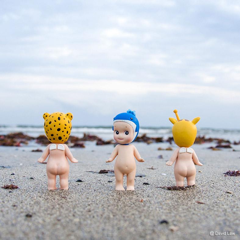 Kamakura Beach 20x20 copie